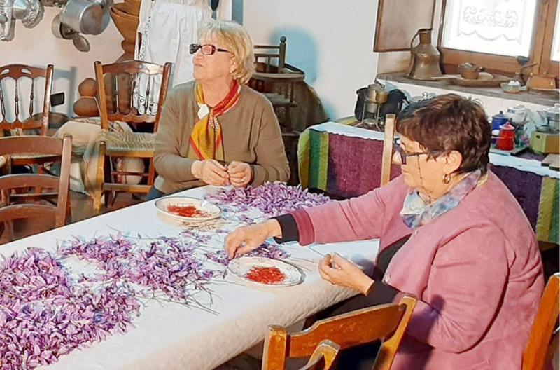 """Presentato il Progetto """"Le Strade dello Zafferano di Sardegna DOP"""""""
