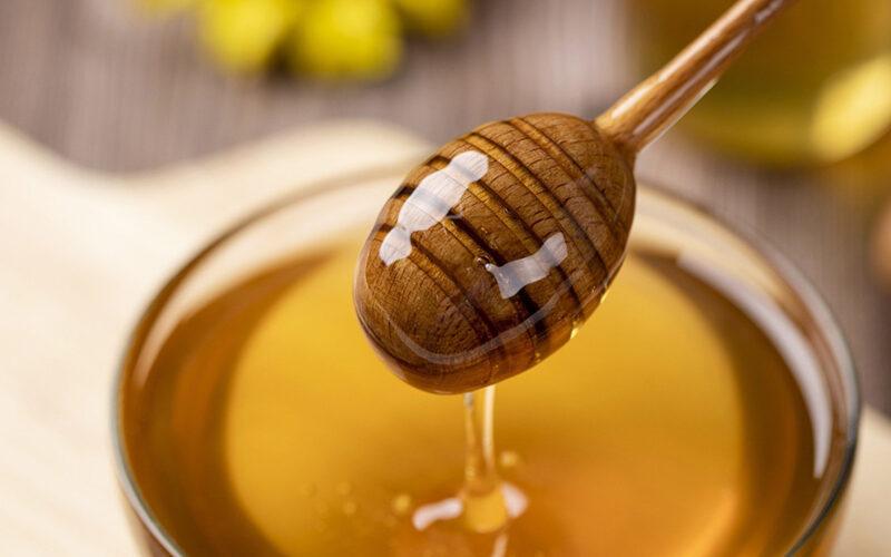Fiera del miele - Monti