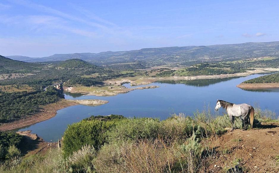 Monteleone Rocca Doria_Panorama