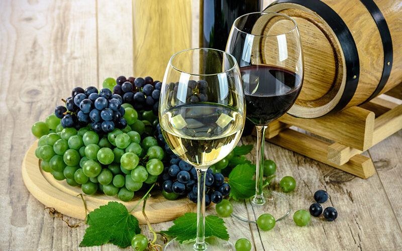 settore vitivinicolo