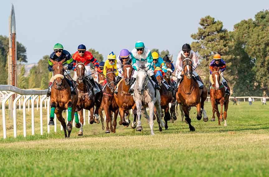 Ippodromo di Chilivani, cavalli in partenza
